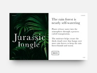 Article Card Expanded - Jurassic Jungle