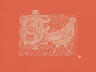 F~ jcdesevre packaging vintage typography illustration design graphic vector