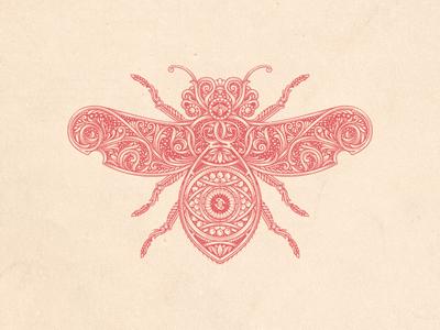 Bee engraving illustrator retro flourish jcdesevre vintage vector illustration design graphic