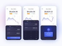 Cryptocurrency Wallet Purchase