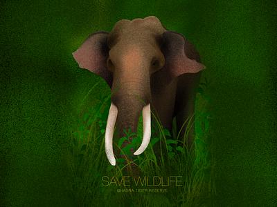Save Wildlife procreate illustration