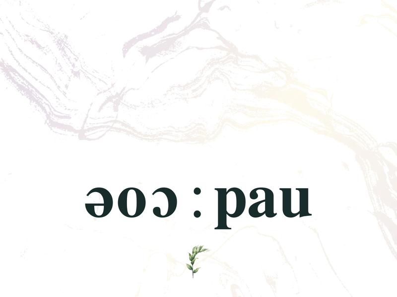 eoc:pau vector icon branding logo design illustration