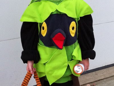 Pokemon - Burmy - Plant Cloak - Costume pokemon plant cloak halloween costume burmy