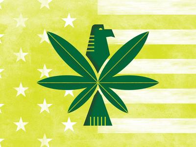 Marijuana in the U.S. bird flag america design print flat plant eagle usa marijuana pot texture illustration