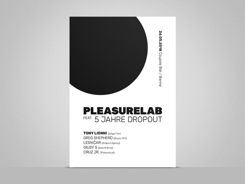 Pleasurelab feat. 5 Jahre Dropout A2 Poster techno house ostgut ton tony lionni sw a2 plakat poster dropout pleasurelab