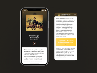 iOS Music App. Article