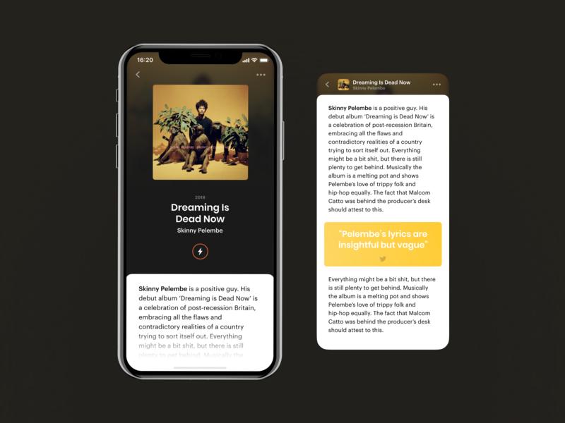 iOS Music App. Article branding mobile design iphone ios screen app ui