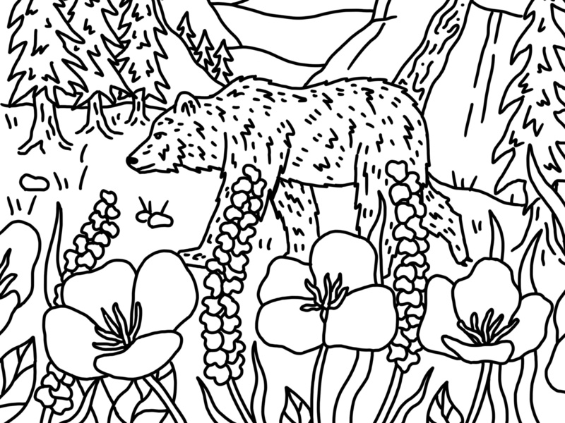 Yosemite Coloring Book Page close up half dome coloring book national parks yosemite grizzly bear california line art landscape drawing mountains outdoors nature illustration