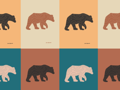 TOPO Bear color study