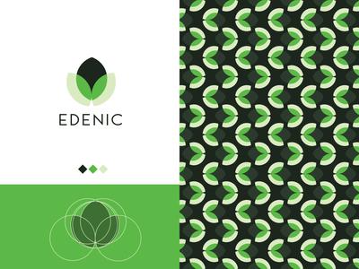 Edanic symbol vector icon newconcept geomatriclogo geometric design nature logo color leaf modern logo logomark logotype planting leaflogo pattern gridlogo organiclogo
