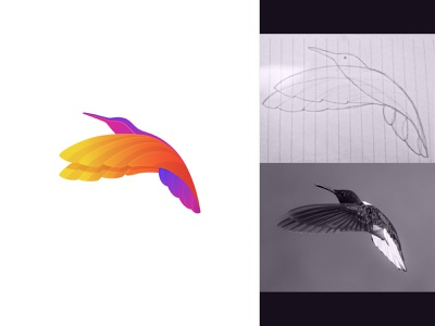 Humming bird Concept logoexposure logomaker needlogo logopresentation logoforsale logodesigner logotype modern simple feather creative symbol wing birdlogo art gradientlogo colorlogo concept logo hummingbird