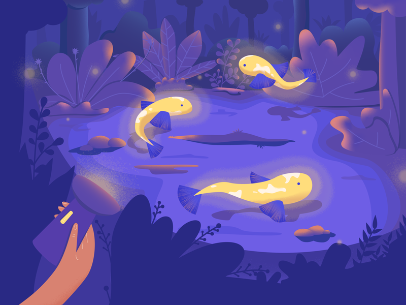 Fish floating in the air🧚‍♂️ lamp hand adobe illustrator noise texture shadow illustration woods shine fishes fish vector illustration vector art