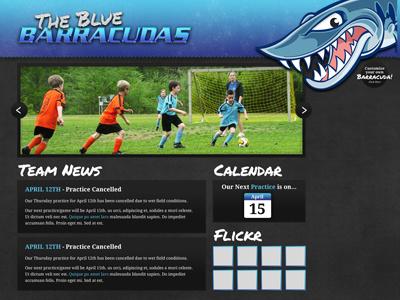 The Blue Barracudas Website blue barracudas youth soccer website
