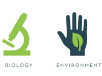 Life Sciences graphics
