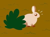 Startled bunny