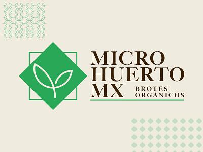Microhuerto MX vegetables microgreens design branding logo