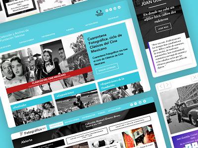 Fotográfica museum catalogue collection photo collection wordpress theme ux ui user interface web design design