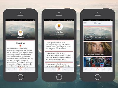 iOS app theme ui ios mobile design profile twitter rss feed