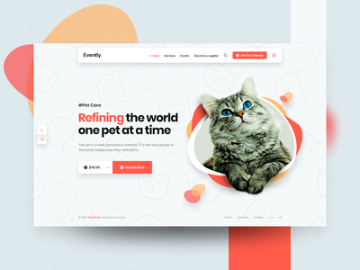 Pet Shop and Veterinary Template