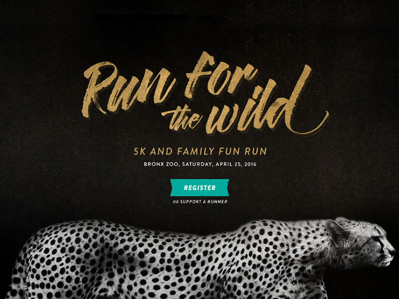 Run for the Wild wild run 5k wildlife