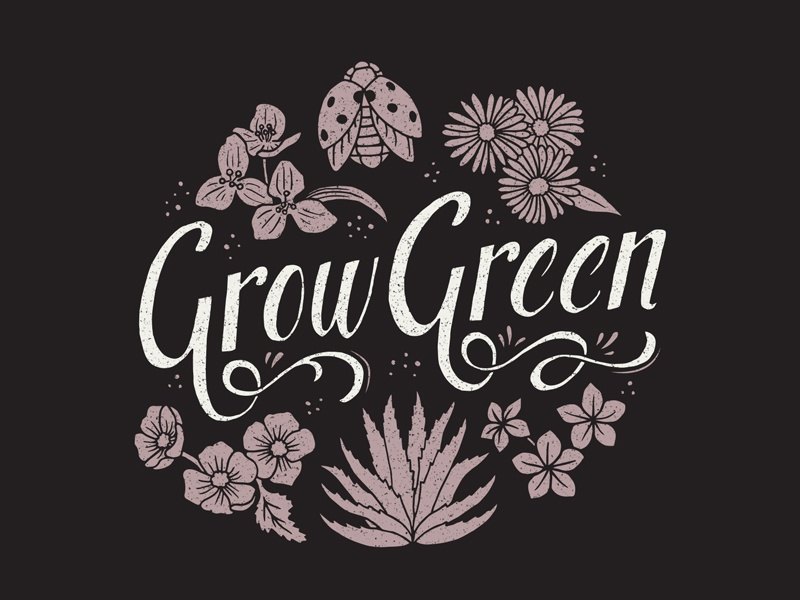 Grow Green  illustration typography ladybug hand lettering lettering nature grunge texture plants agave flowers shirt design