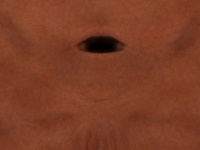 Trimp Skin