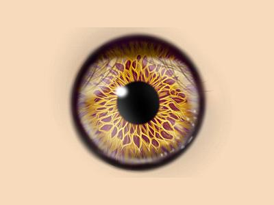 Rose Eye medibang realistic drawing realism eye raster illustration digital illustration art