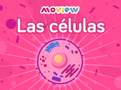 Cell moview mexico aftereffects illustrator illustration design animation animación