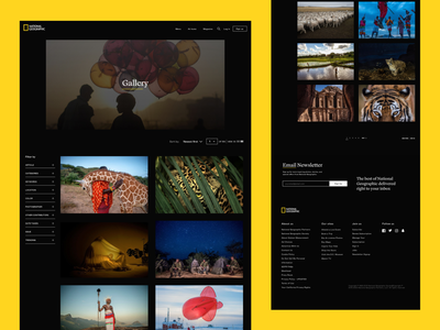 National Geographic Redesign Concept Gallery dark ui desktop design desktop app gallery app photo app photo gallery gallery page nature photography photographer photography photos nature national geographic redesign concept redesign websitedesign webdesign design ux ui