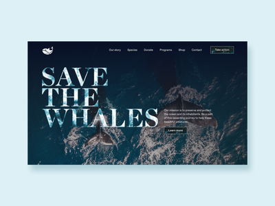 Save the whales concept #3 art direction art director cinematic homepage website design landing page type exploration editorial modern minimal design photography nature photography national geographic whale logo whales