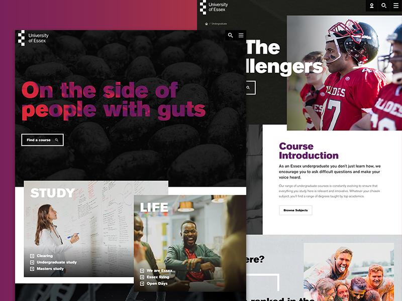 University of Essex. typography gradient branding layout ux ui digital case study website