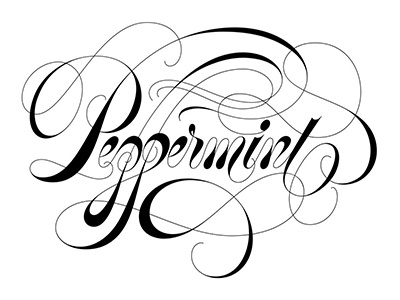 Peppermint lettering type spencerian copperplate