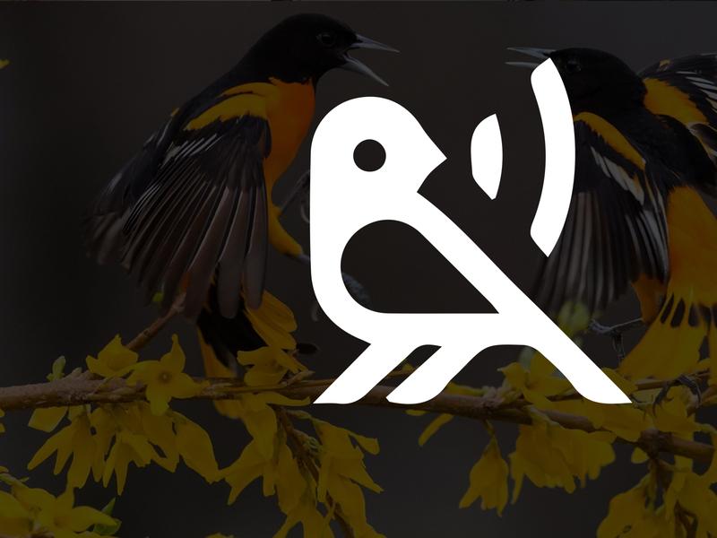 Modern Minimalist Business Logo Design | Bird Logo Design minimal animation visual design companr brand logo brandinglogo businesslogo companylogo vector minimalist logo illustration design
