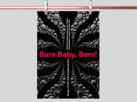 Burn Baby, Bern!