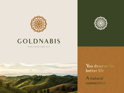Goldnabis - Second draft thai cbd cbd oil branding earth thailand cannabis concept design logo nature concept