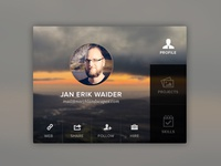 User Details – Profile Box webdesign ux ui interface box profile user icons tabbed navigation skills photo