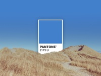 PANTONE 2173 U