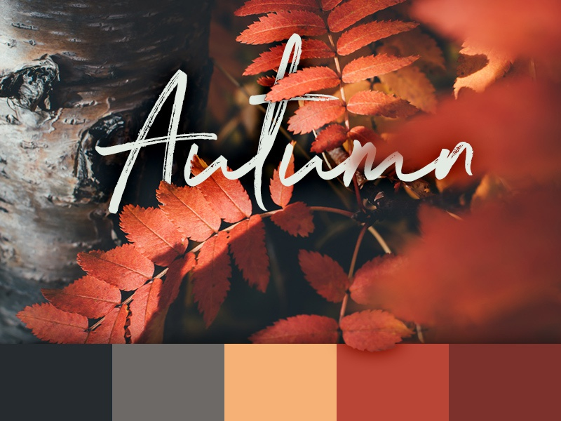 Color schemes autumn
