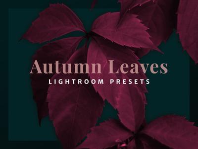 Autumn Leaves - Lightroom Presets dark typography flower photo image cover lightroom