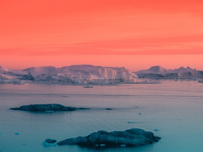 Pantone Color of the Year 2019 | Living Coral inspiration trend design photo photograhy greenland color pantone