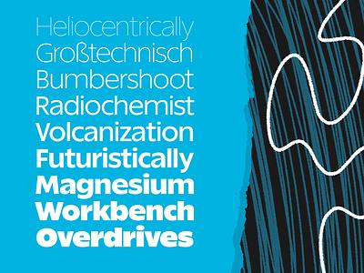 Really Sans font fonts optical size sans serif typeface