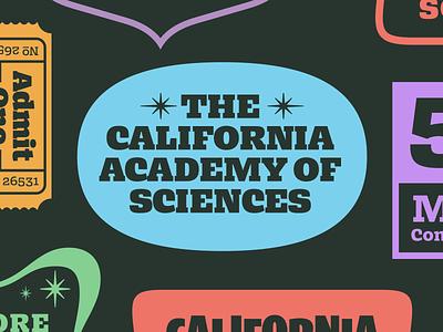 Badge #1 california bezzia slab serif badge