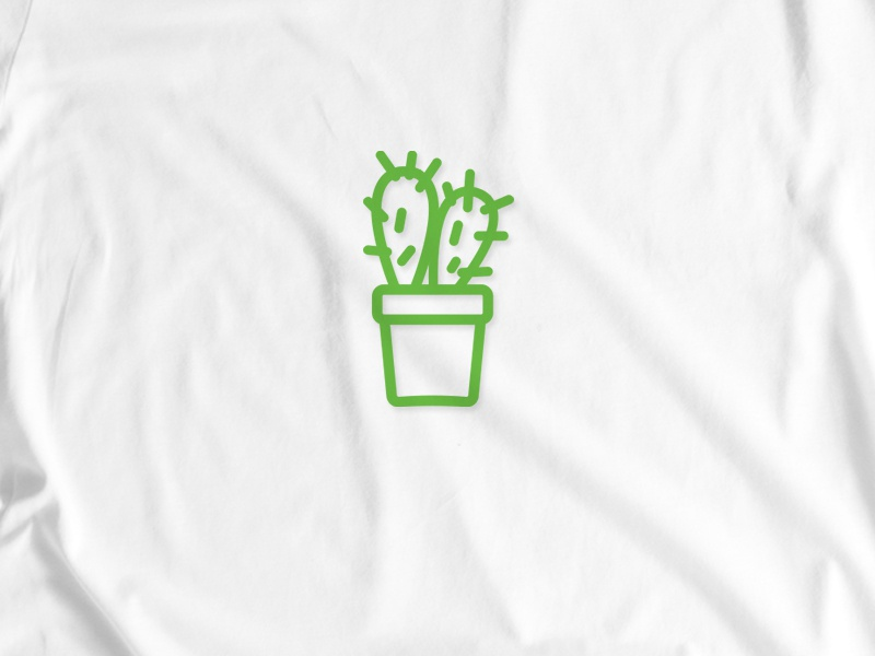 Cactus Aime project 6/6