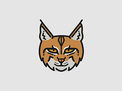 Bobcat Dribbble wildlife african feline animal purr cat attenborough planet earth bobcat