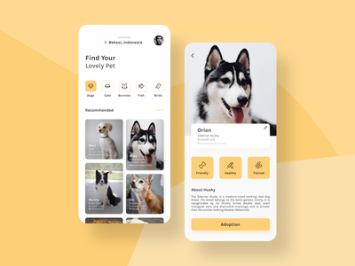 Pet Adoption App pet shop pet app petshop cat trending ui  ux ux pet care pet adoption pet dog ui design mobile app minimal clean mobile ui mobile design design daily ui ui
