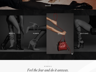 Tamara Mellon Design Exploration: Homepage Detail 2 shopify hover dark shoes minimal luxury brand luxury landing page homepage high-end fashion ecommerce