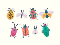 Insect Collection 2