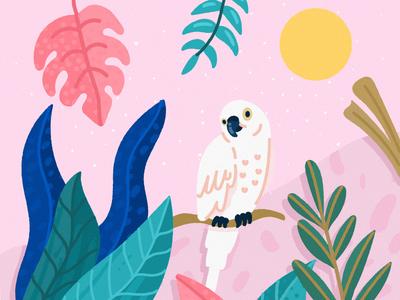 Tropical  2 parrot tropical jungle illustration freepik