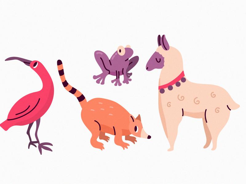 Amazon animal collection animals frog lama illustration freepik