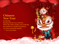 chinaese new year